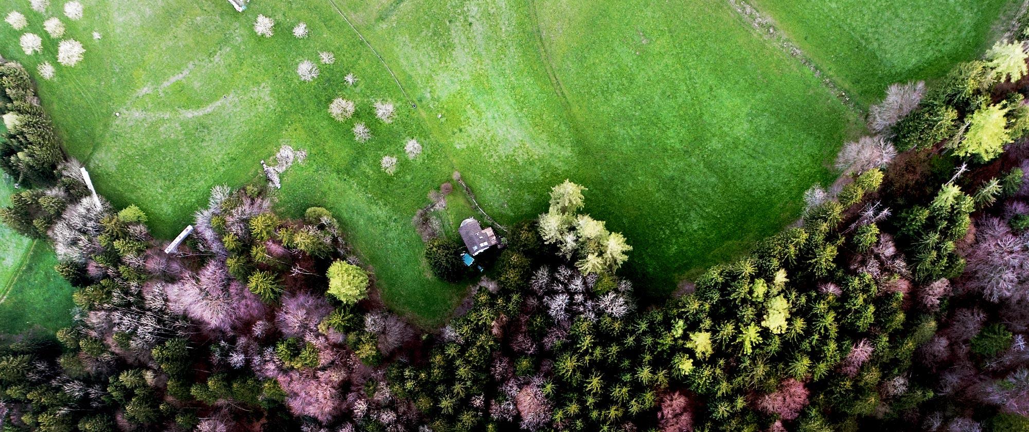 Speicher Wald, Luftaufnahme, Drohnen-Aufnahmen Ostschweiz